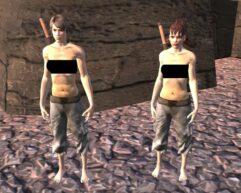 18+ Female Body - Kenshi мод