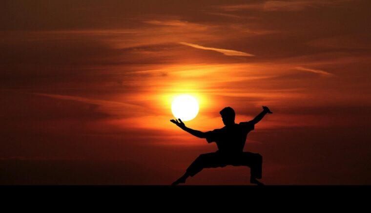 Faster Martial Arts - Kenshi мод