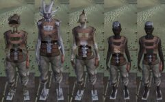 Shirts For All — Unlock Armor Slots - Kenshi мод (изображение 7)